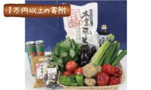 全国のふるさと納税情報ページ。長野県木島平村のふるさと納税情報。長野県木島平村のふるさと納税はSUNチャンネルで。