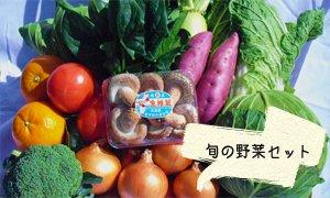 全国のふるさと納税情報ページ。兵庫県淡路市のふるさと納税情報。兵庫県淡路市のふるさと納税はSUNチャンネルで。